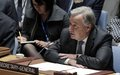 secretary-general's remarks to security council